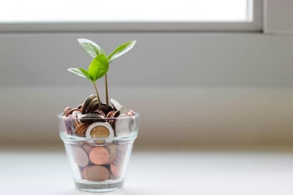 9 Best South African Savings Accounts That Pay The Highest Interest Rates